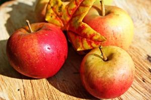 Elmanın Yararları Nelerdir ?